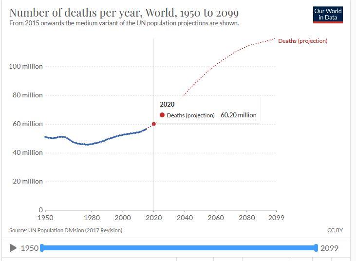 Weltmortalitätsstatistik
